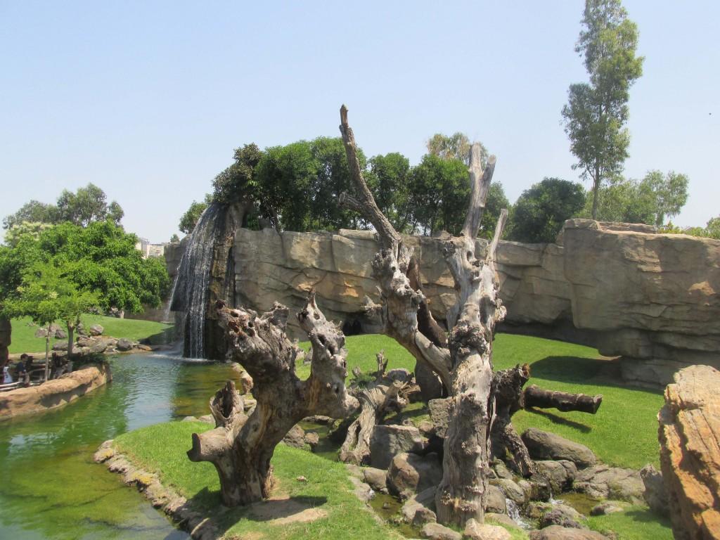Bioparc Valencia Waterfall
