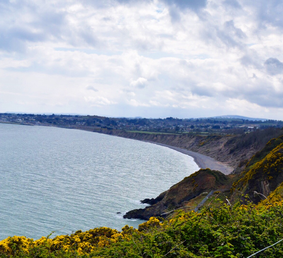 Bray Cliff Walk | © Mary Sheehan