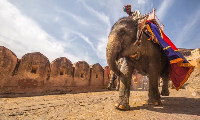 Jaipur, India   ©C Rayban/Unsplash