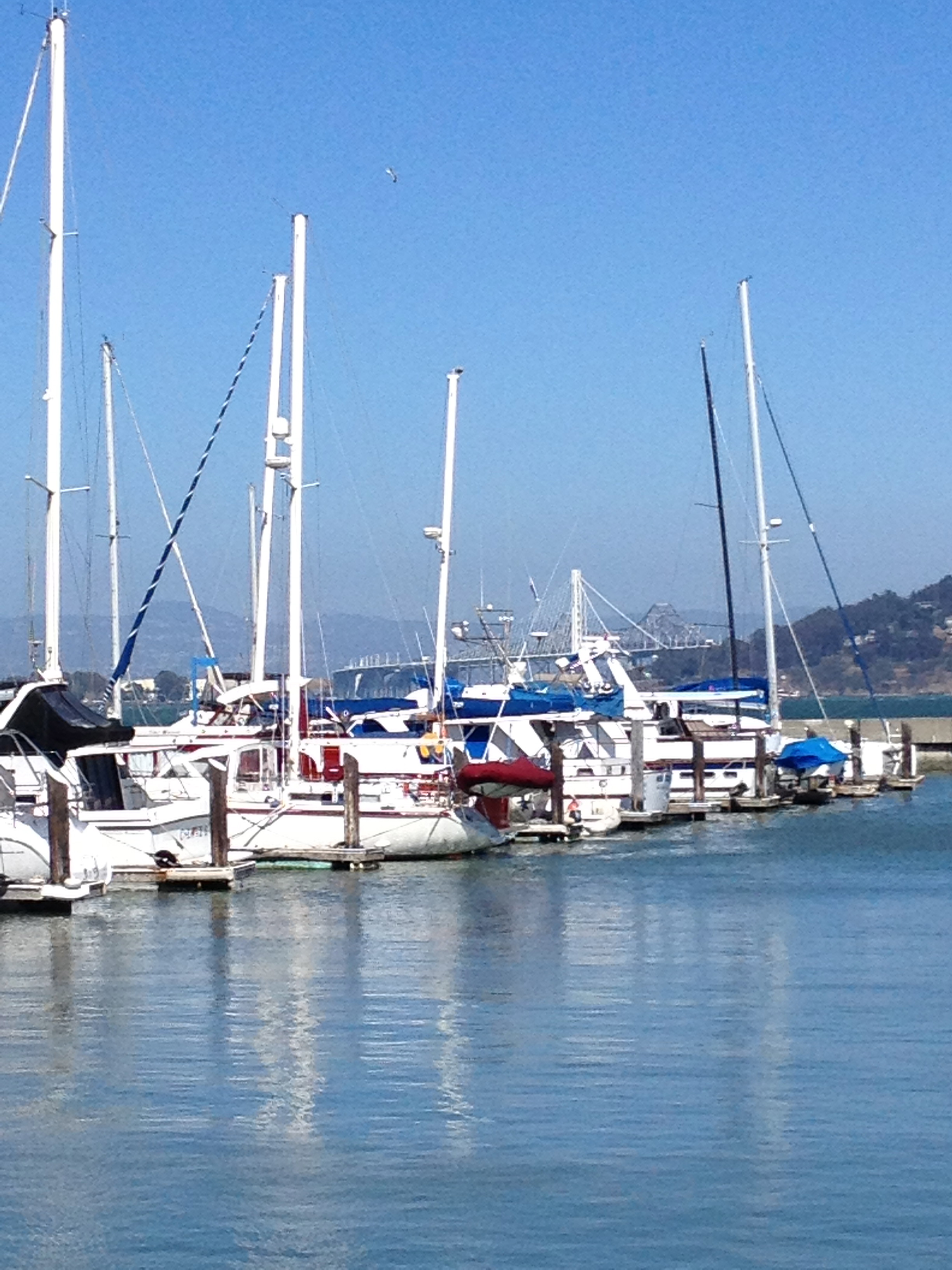 Boats in the Marina at Fort Mason | © Edissa Nicolás
