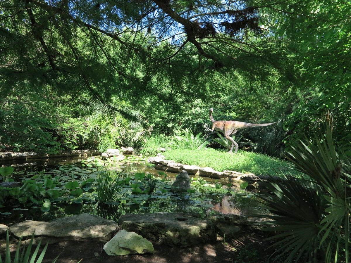 Prehistoric Garden, Zilker Botanical Gardens | © Jenaveve Hunter