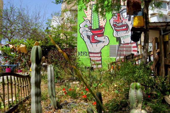 Volunteering garden in South Tel Aviv, Courtesy of Jesi Soifer