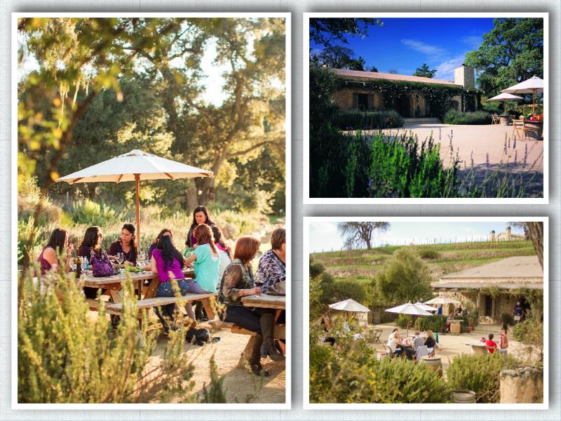 Photo courtesy of Sunstone Vineyards and Winery