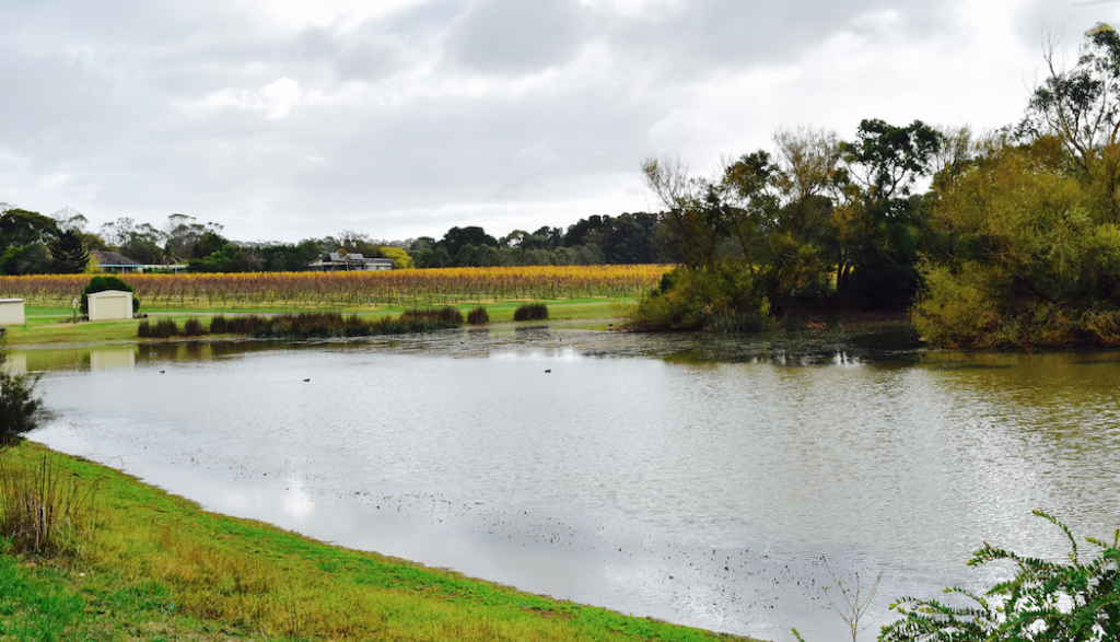 The lake overlooking the entire 50 acres. © Jessica Poulter
