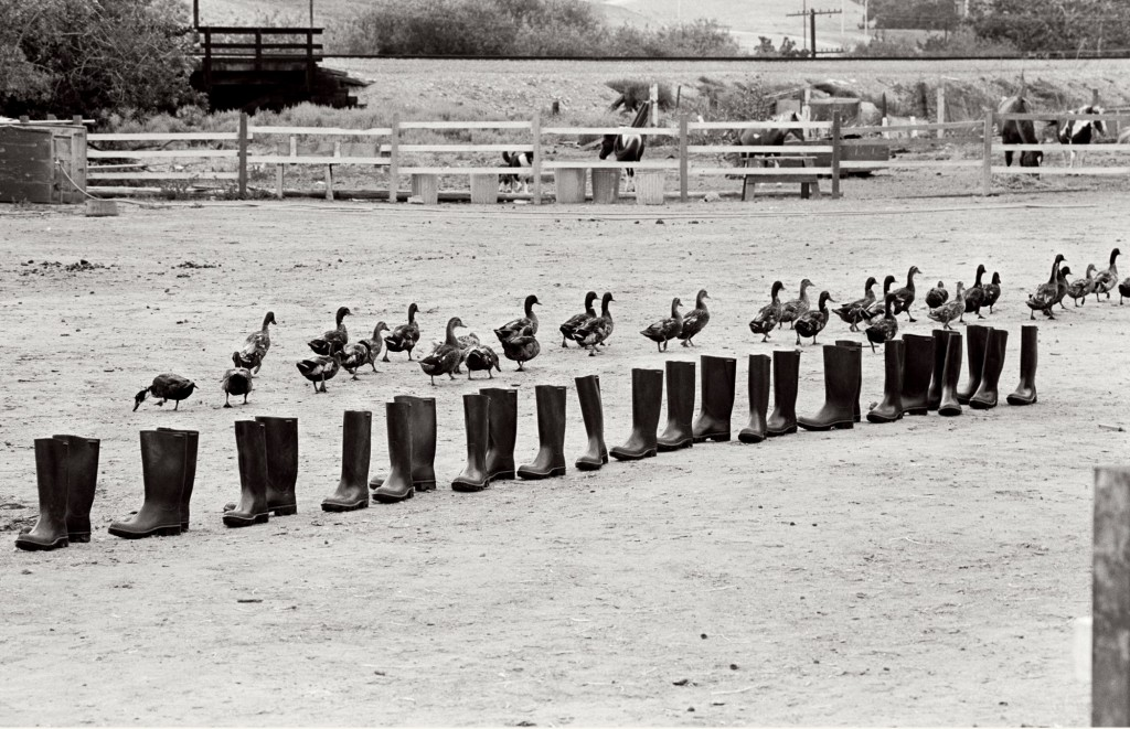 Eleanor Antin 100 BOOTS Move On Sorrento Valley, California. June 24, 1972, 8:50 am (mailed: December 9, 1972) Courtesy Ronald Feldman Fine Arts, New York