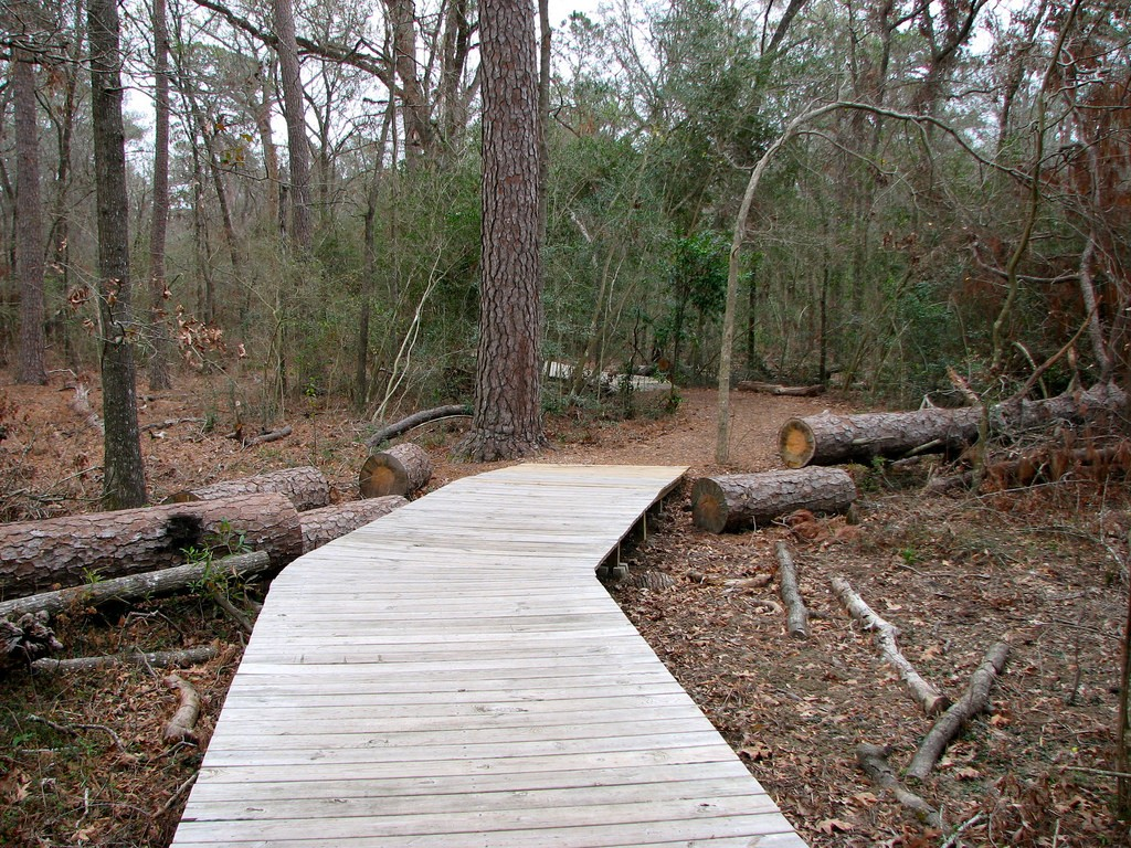 Houston Arboretum | © Bill Bradford/Flickr