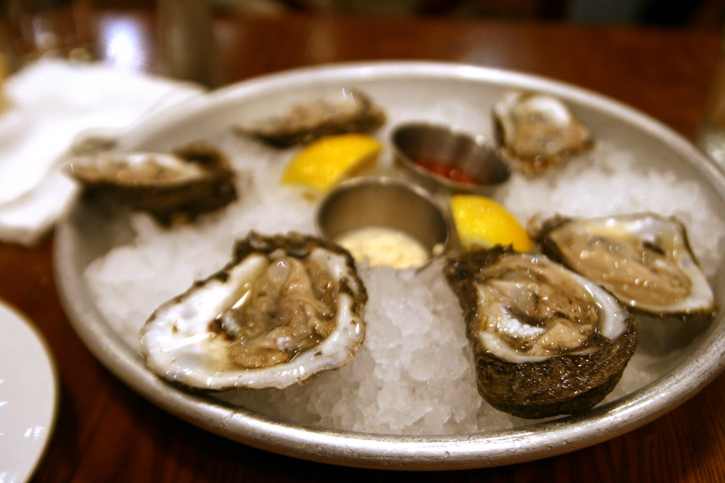 Oysters | © Quinn Dombrowski/Flickr