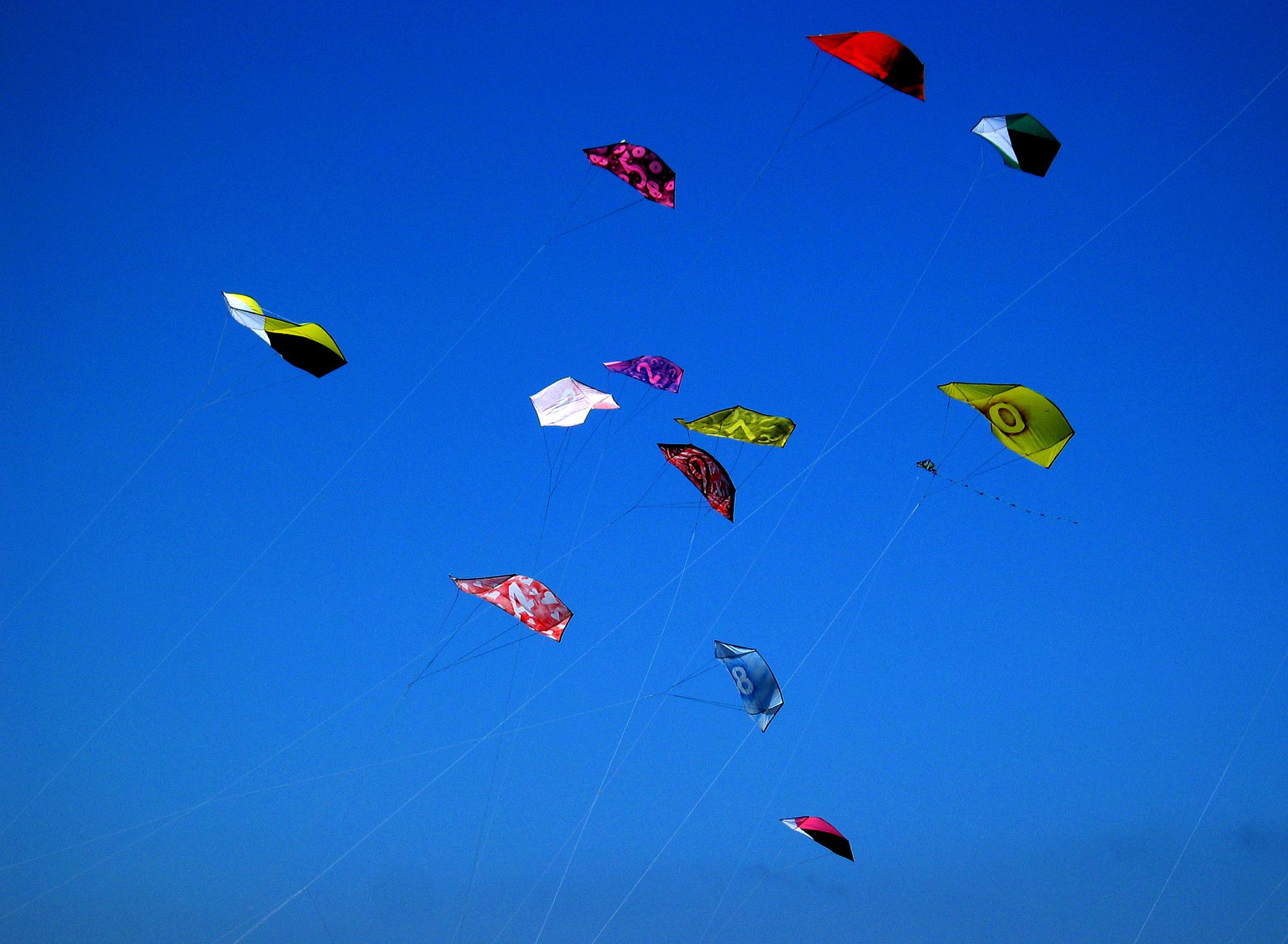 kites rokkaku battles blue red | © Christopher Sessums/Flickr