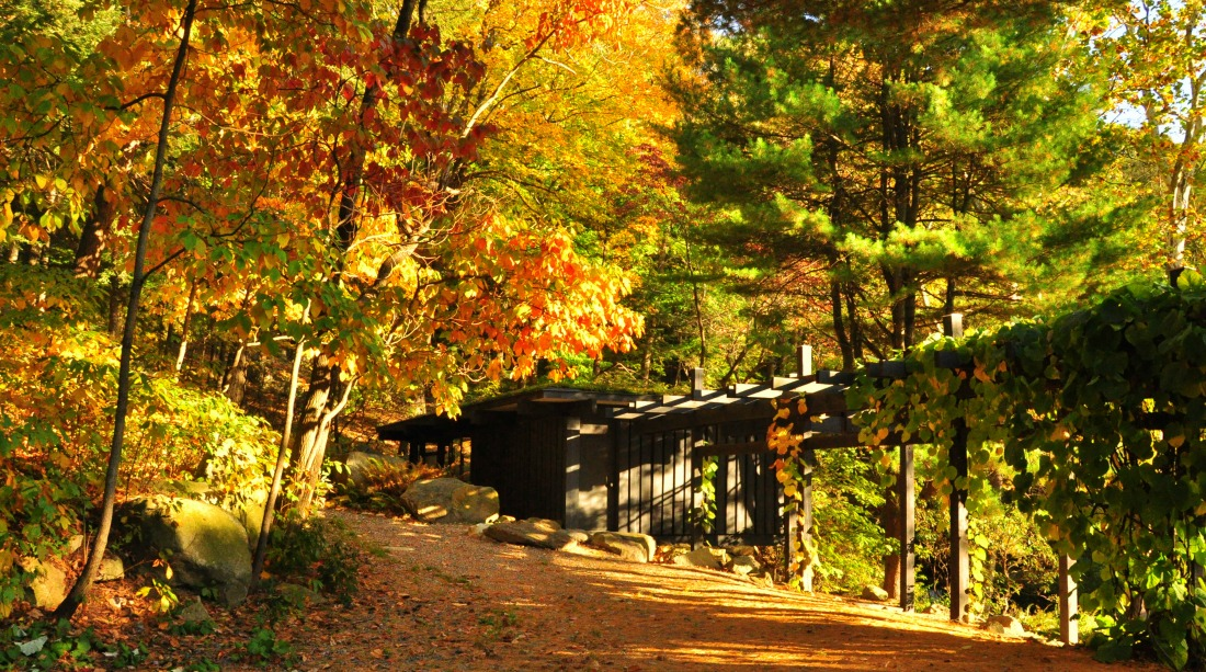Dragon Rock Pergola and Russel Wright's Studio at Manitoga Photo Vivian Linares