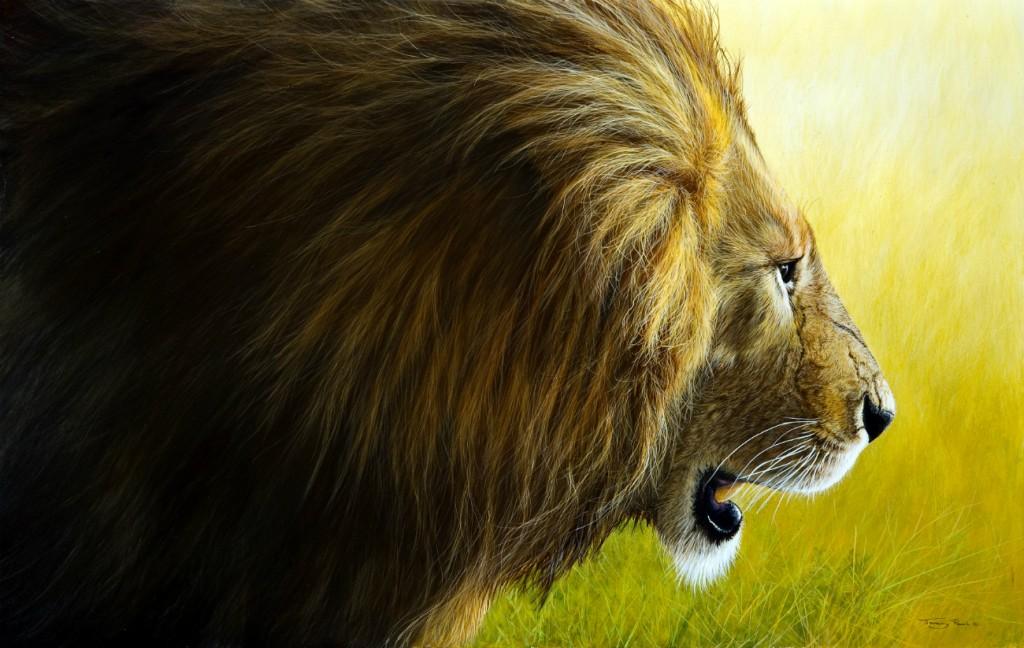 Enforce Lion Marsh Pride, Maasai Mara | © Jeremy Paul