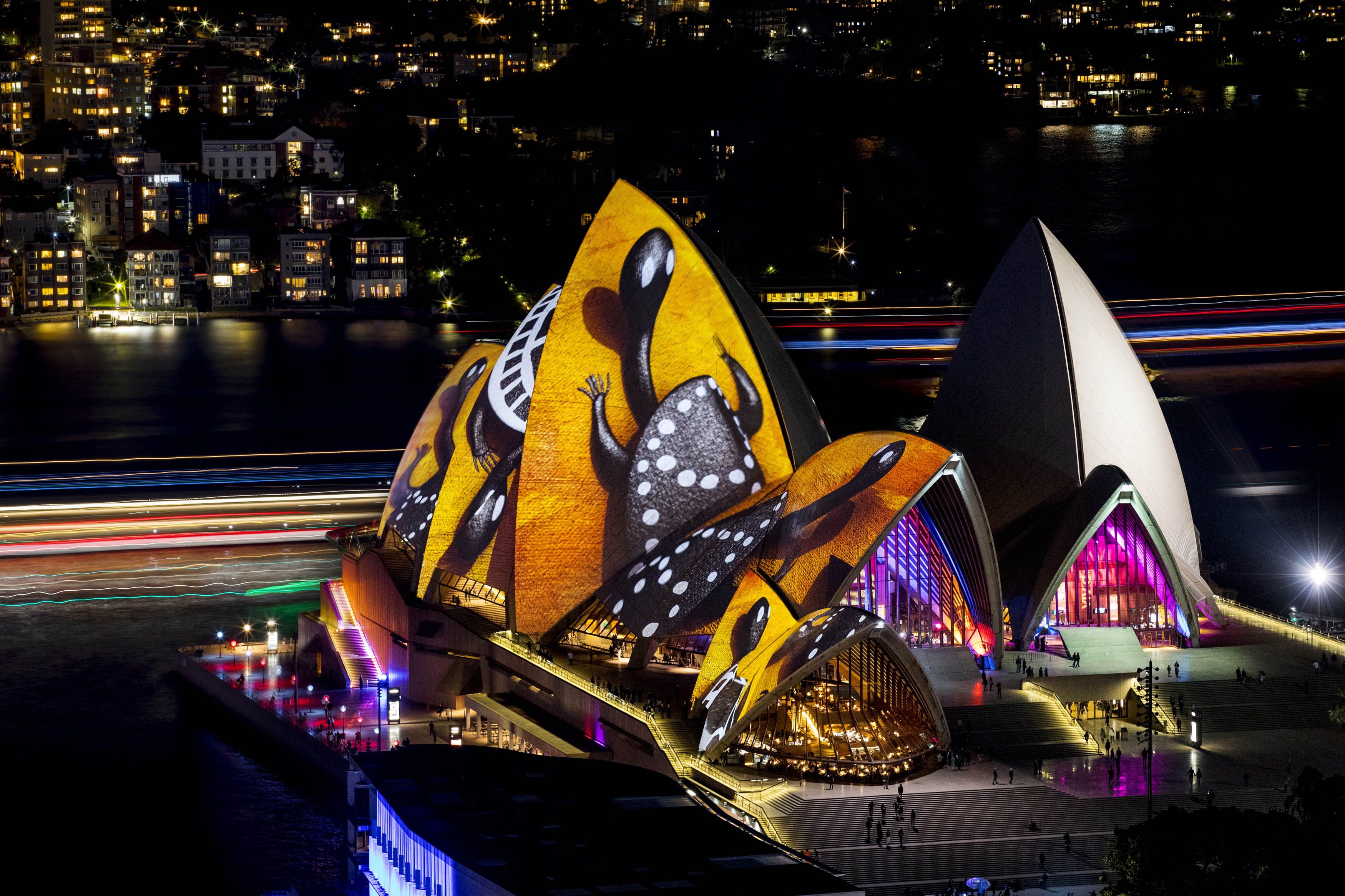 Vivid festival turns sydney into a magical wonderland for Pool show sydney 2016