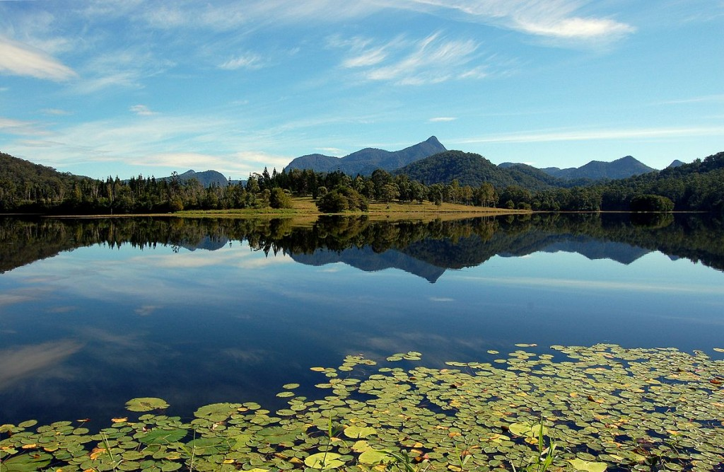 Mount Warning from Clarrie Hall Dam   © Pouts31 / WikiCommons