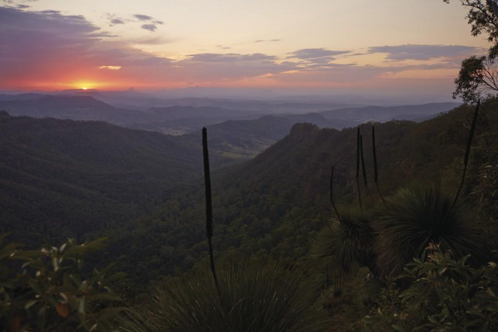 O'Reilly's, Lamington National Park, QLD   Courtesy of Tourism Australia © Maxime Coquard