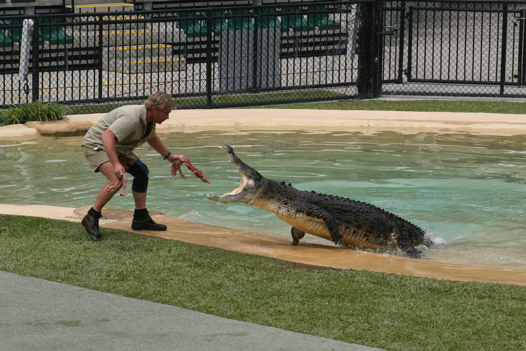 Steve Irwin: Spotlight On Australia's Beloved Crocodile Hunter