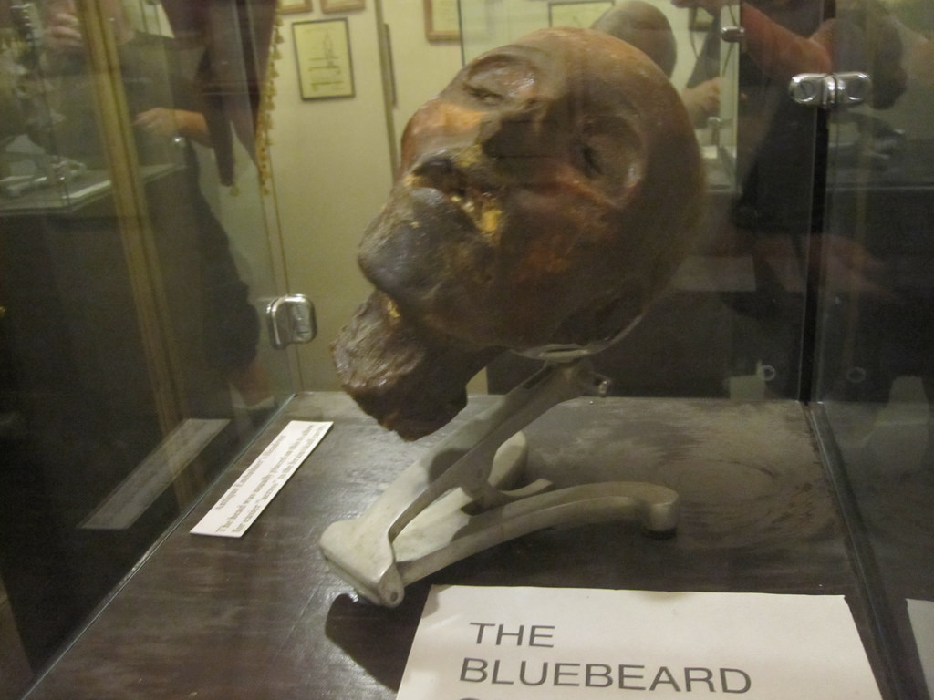 Severed head of 'the Bluebeard of Gambais' at the Museum of Death in Los Angeles   © John Mosbaugh/Flickr