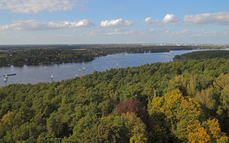 What To See And Do In Berlin S Grunewald Forest