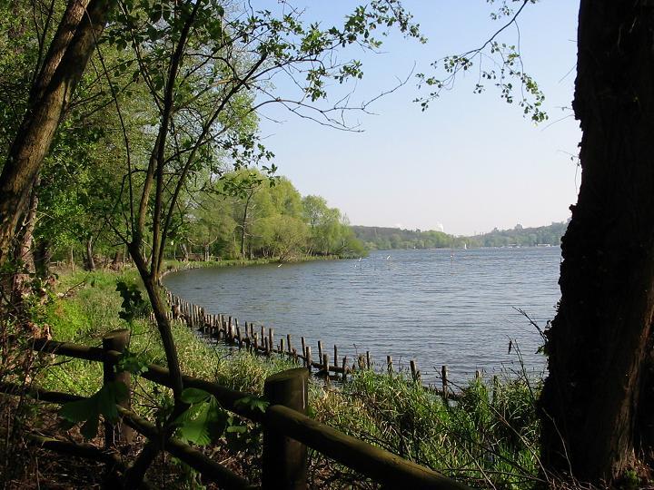 Grunewald Forest | © Lienhard Schulz/WikiCommons