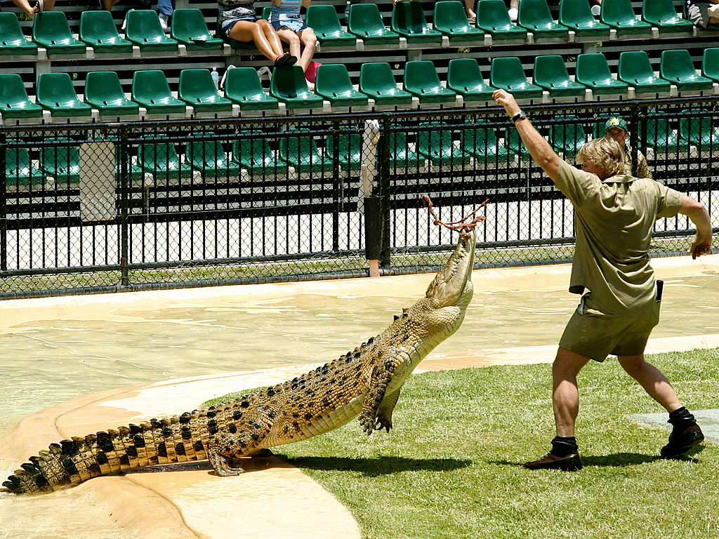 Steve Irwin Spotlight On Australia S Beloved Crocodile Hunter