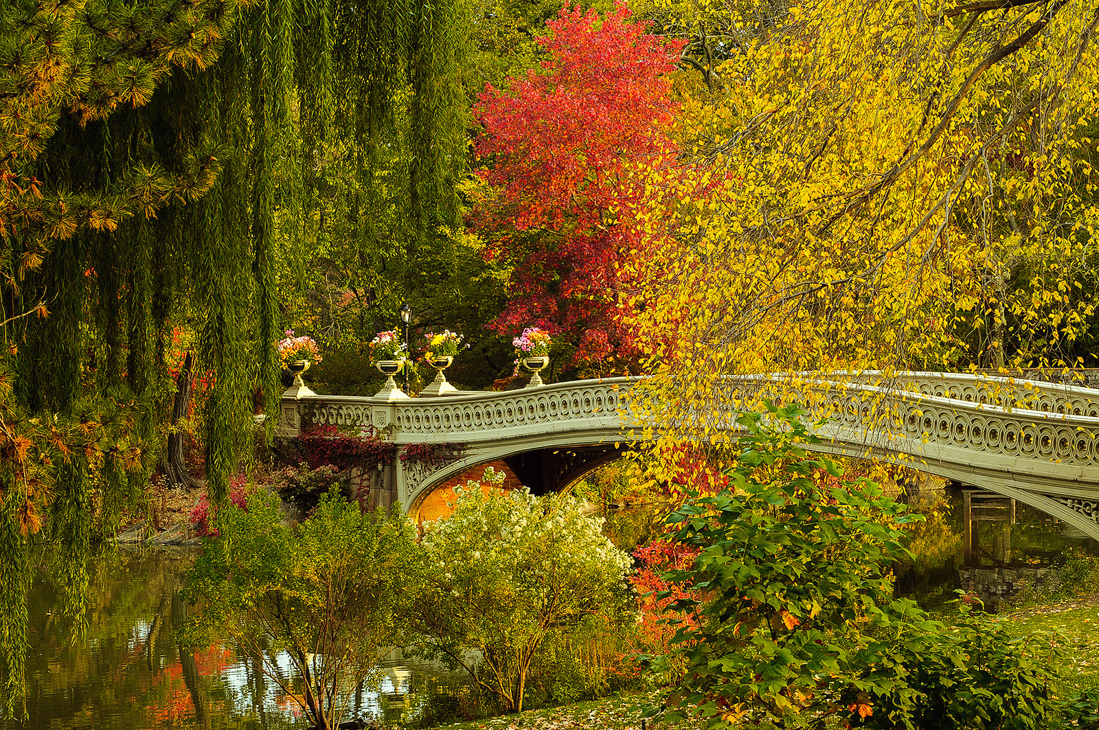 Central Park | © Randy Lemoine/Flickr