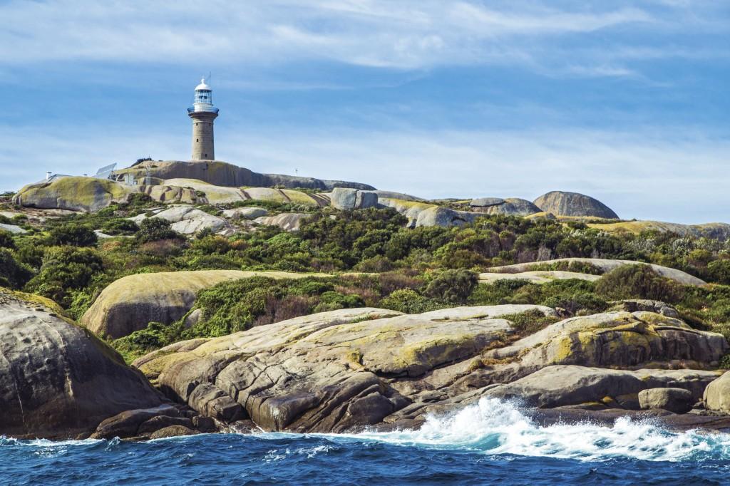 Montague Island, Narooma, NSW   Courtesy of Tourism Australia © Andrew Smith