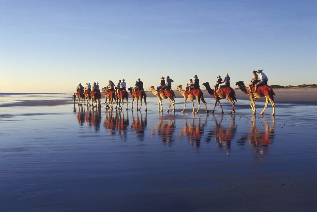 Camel rides, Cable Beach, Broome   Courtesy of Tourism Australia © Darren Tieste