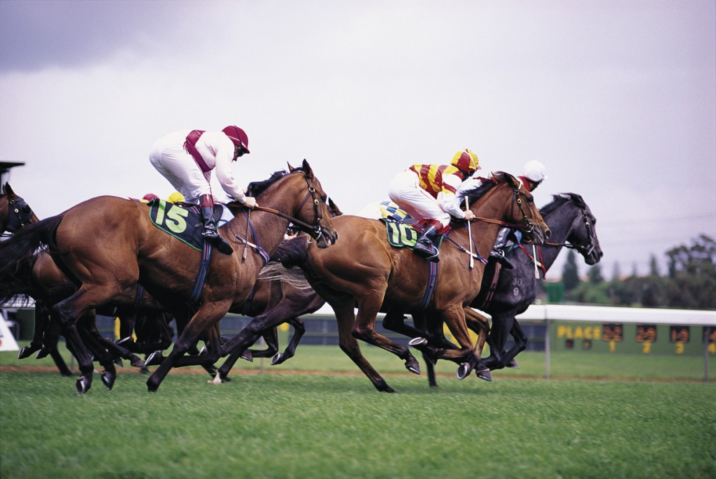 Melbourne Cup, Melbourne, VIC | Courtesy of Tourism Australia © David B. Simmonds