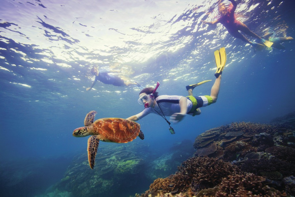 Snorkelling, Great Barrier Reef, QLD | Courtesy of Tourism Australia © Darren Jew
