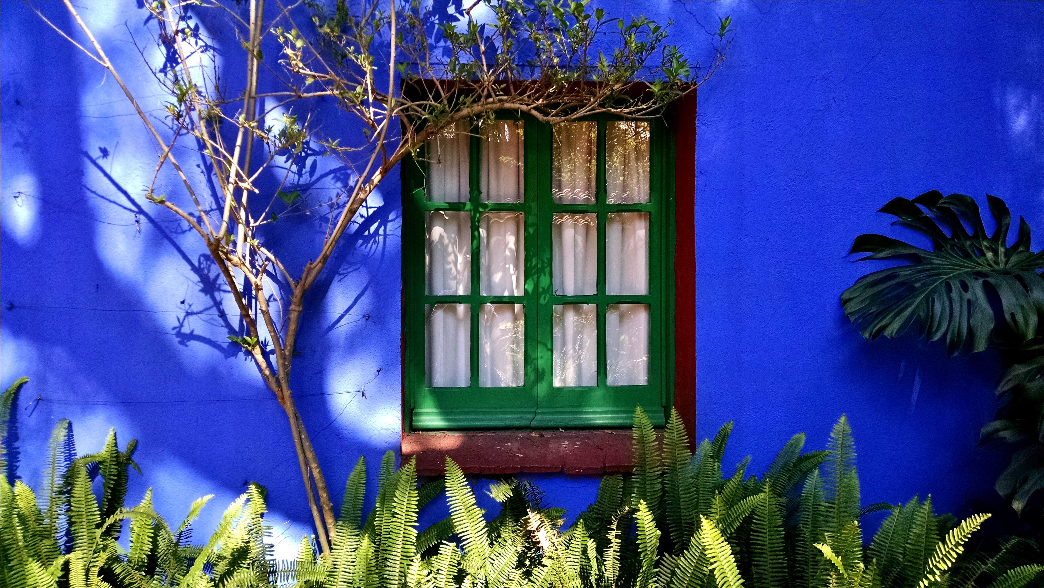 Museo Frida Kahlo | © Kyle Magnuson/Flickr