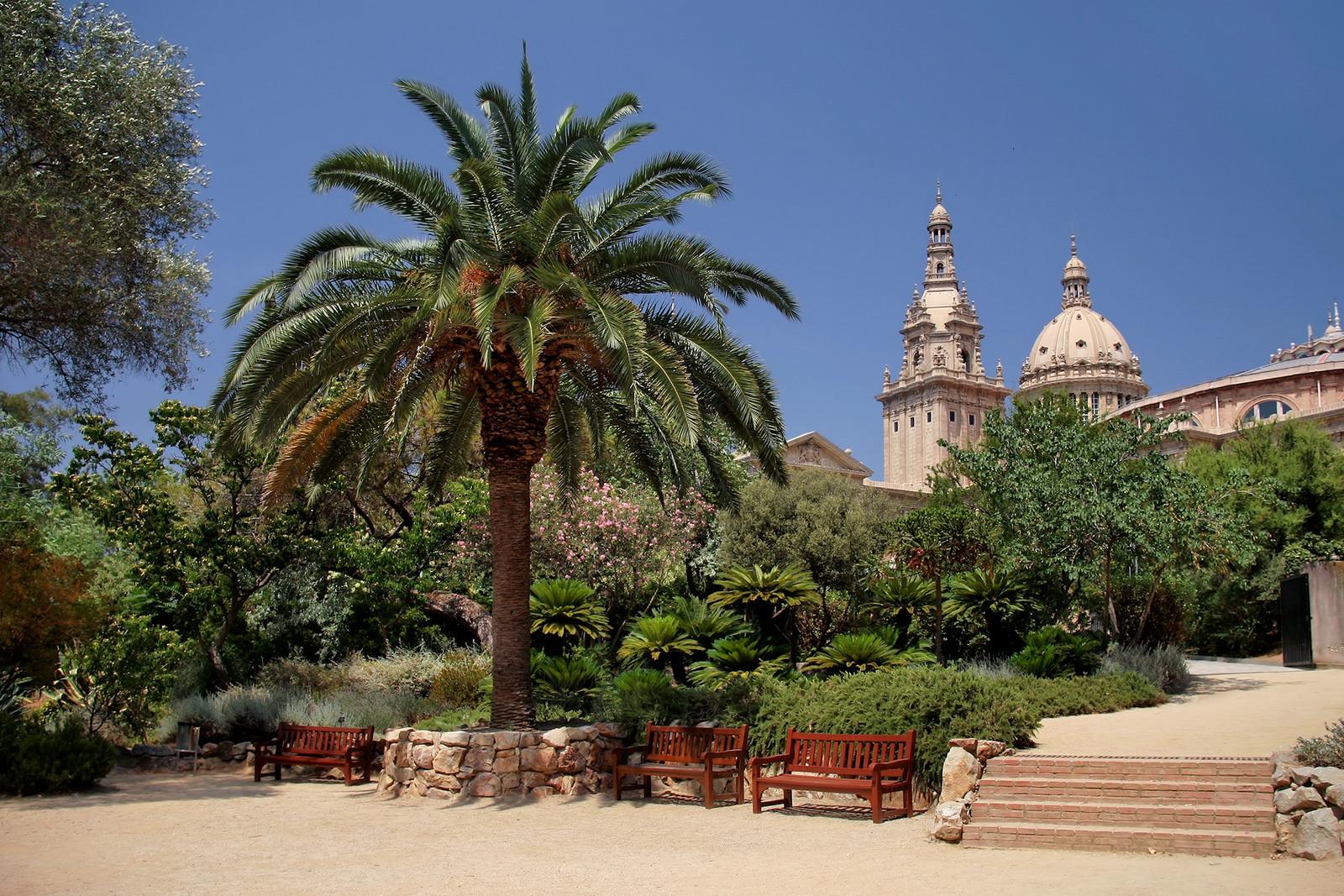 The Botanic Gardens | © Jorge Franganillo / Flickr