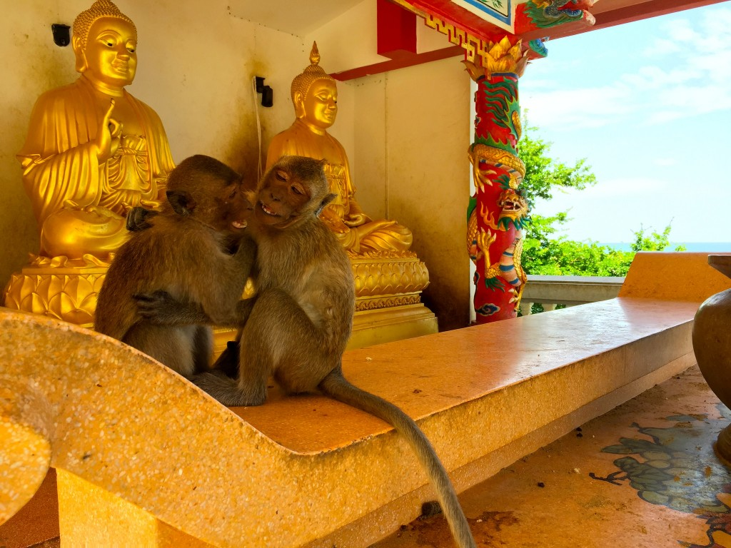 Wat Khao Lad, or monkey mountain, in Hua Hin/Courtesy of Kelly Iverson