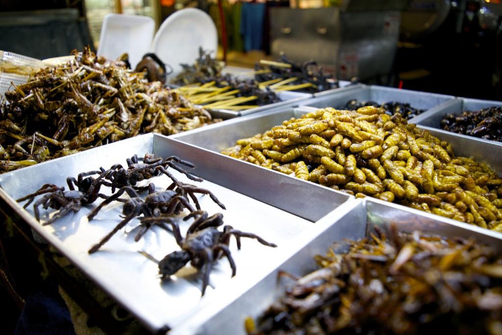 Bug Vendor on Khao San Road/Courtesy of Kelly Iverson