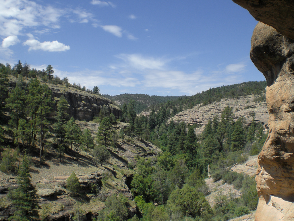 View from the Gila Cliff Dwellings | © Benton Greene/Flickr