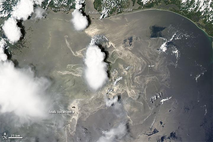 Oil Slick in the Gulf of Mexico   © NASA Goddard Space Flight Center/Flickr