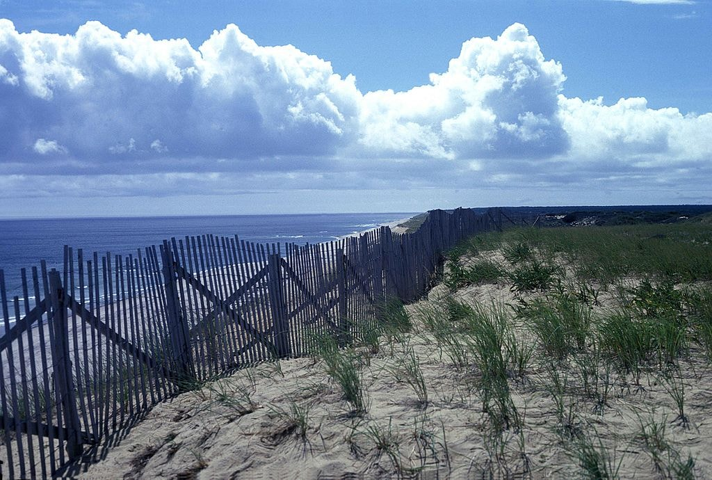 Cape Cod National Seashore | Tiner Ralph, U.S. Fish and Wildlife Service / Wikimedia Commons