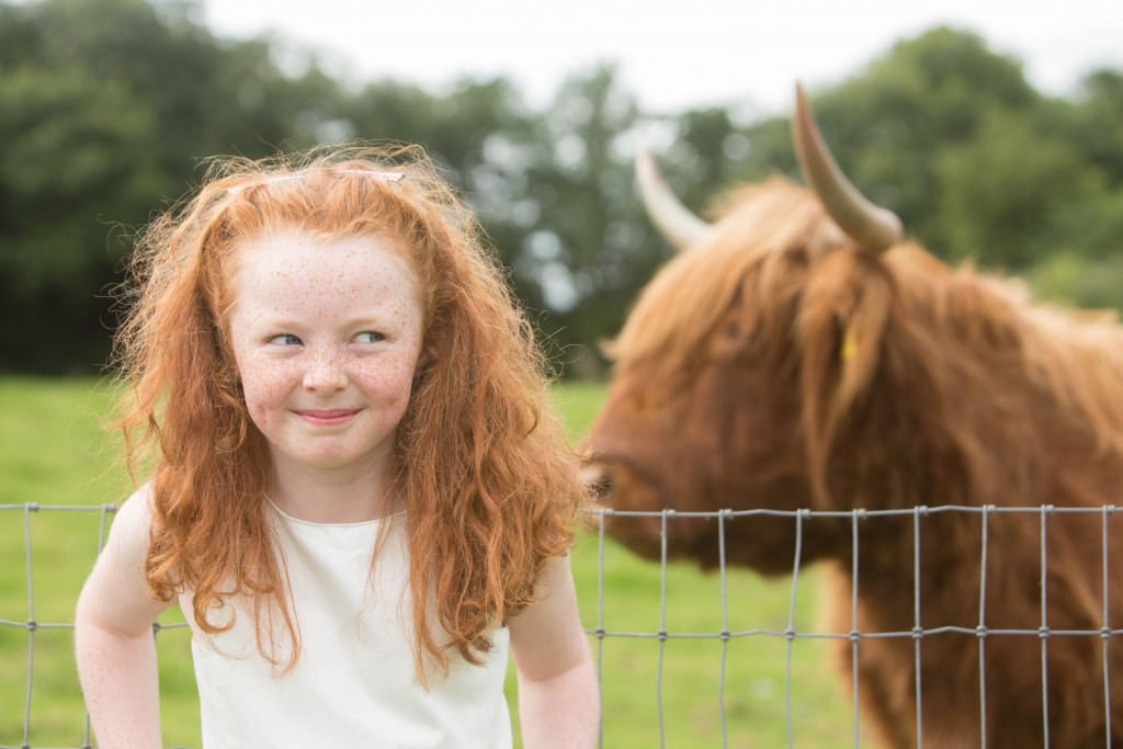 Aoibhe Sheehan from Lisgoold, Co. Cork getting ready for the upcoming Convention with the Highland Cow at Rumley's Open Farm | ©Darragh Kane