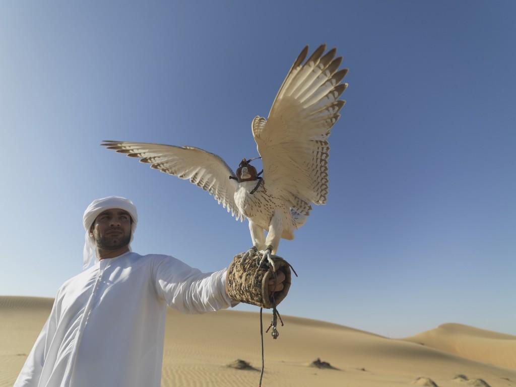 UAE Wildlife | © Neli Dodhia / Pixabay