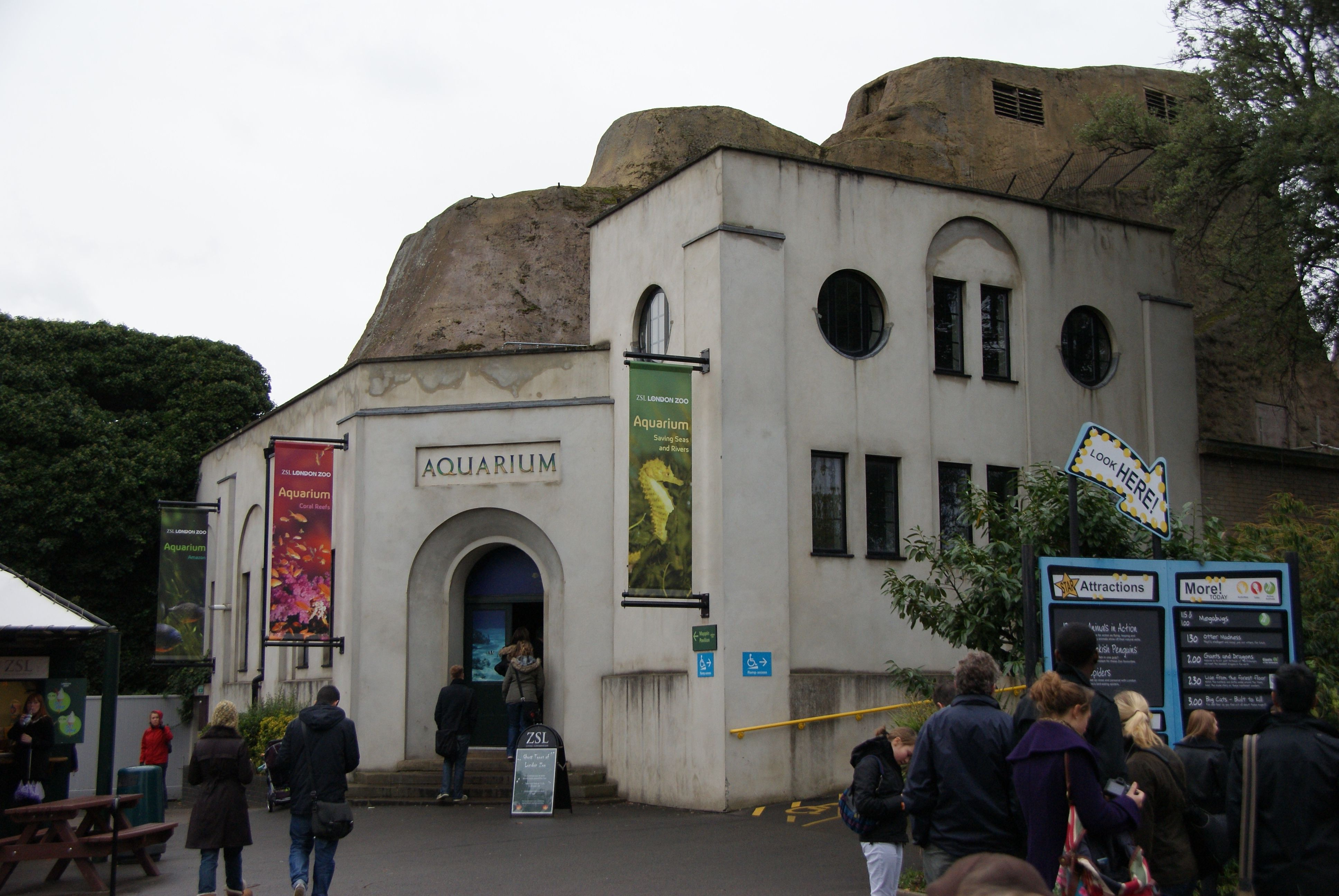 Buy fish for aquarium london - London Zoo Aquarium Chris Sampson Wikicommons