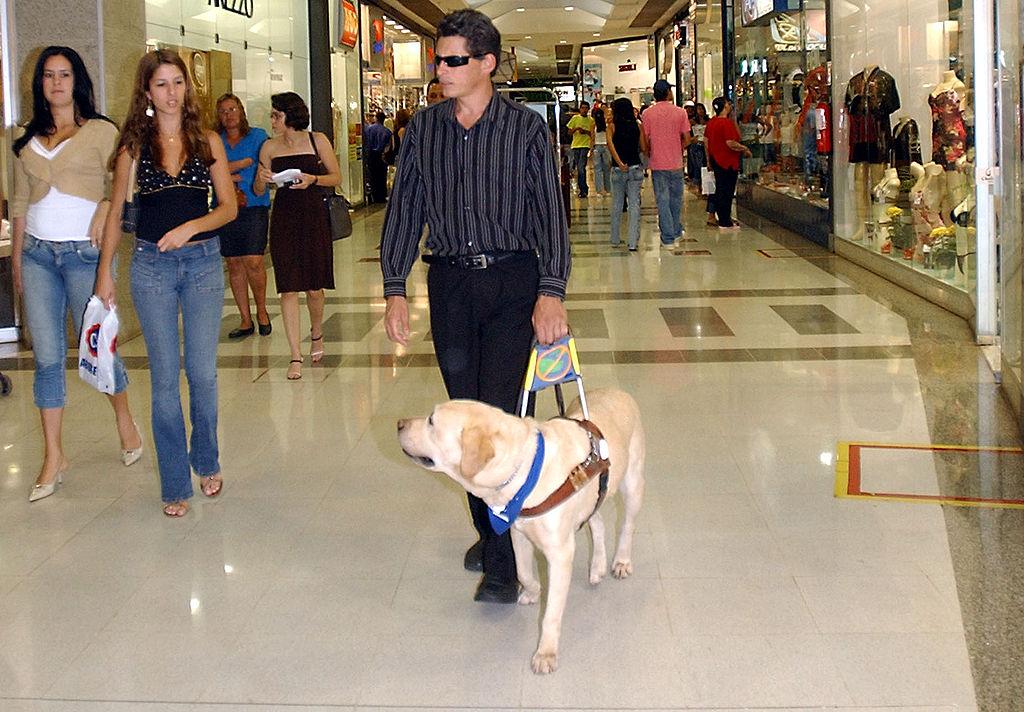 A guide dog assists a blind man in Brasilia |©Antonio Cruz/Abr/Flickr