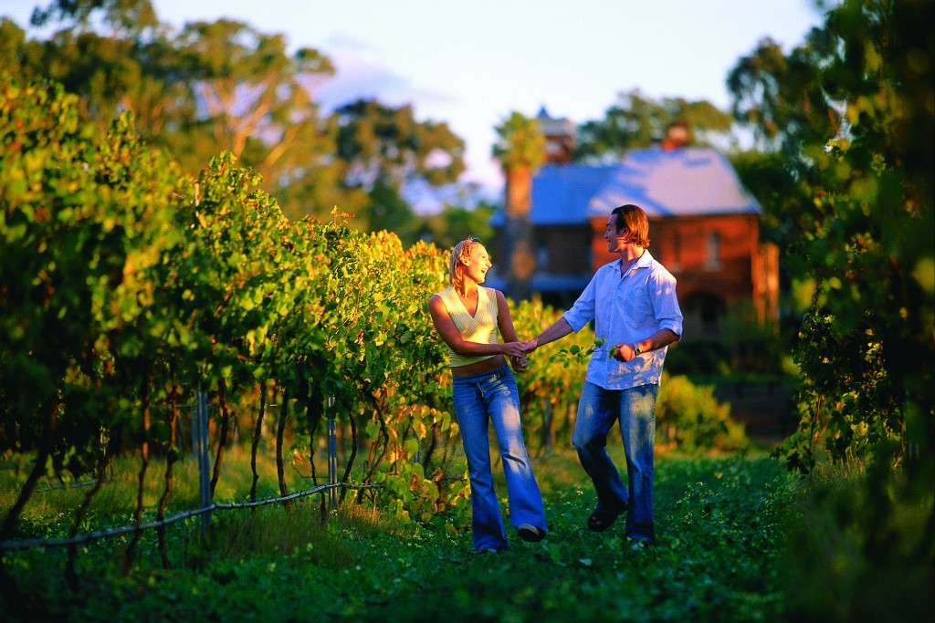 Couple in vines at Riverbank Estate Winery, in the Swan Valley | Courtesy of Tourism Western Australia