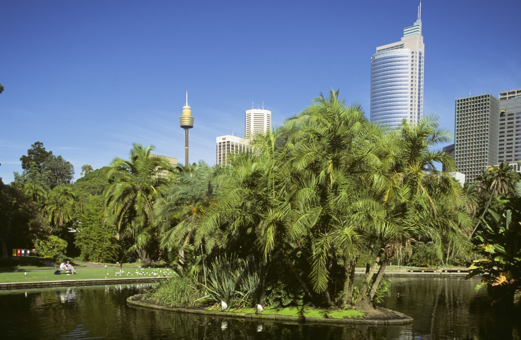 Royal Botanic Gardens with Sydney city buildings in background | Courtesy of Destination NSW