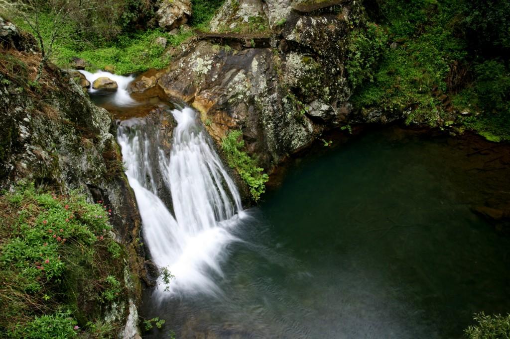 Jenolan River, Blue Mountains   Courtesy of Jenolan Caves