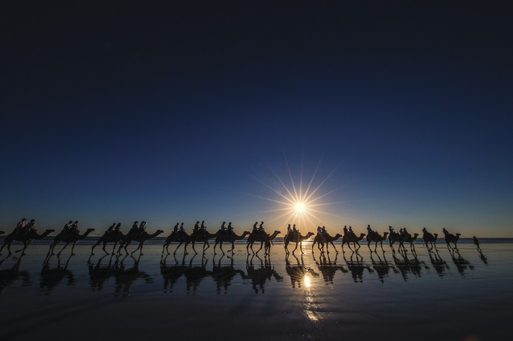 Camels at sunset, Cable Beach | Courtesy of Tourism WA