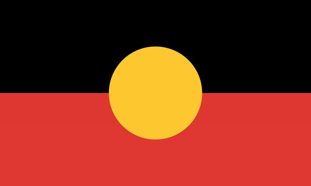 Image result for the aboriginal flag