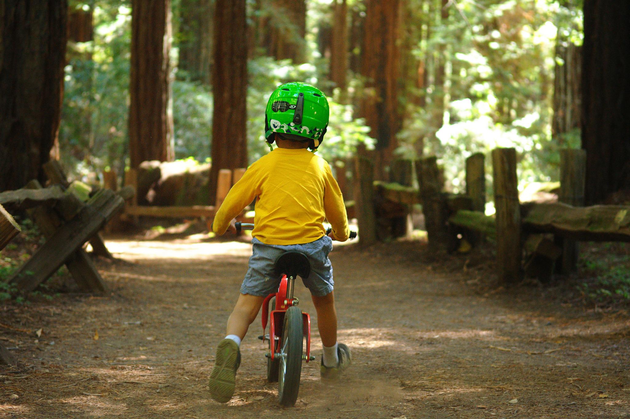 Biking through the woods © george ruiz/Flickr
