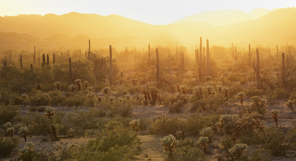 Hiking The Grand Enchantment Trail In The Southwest