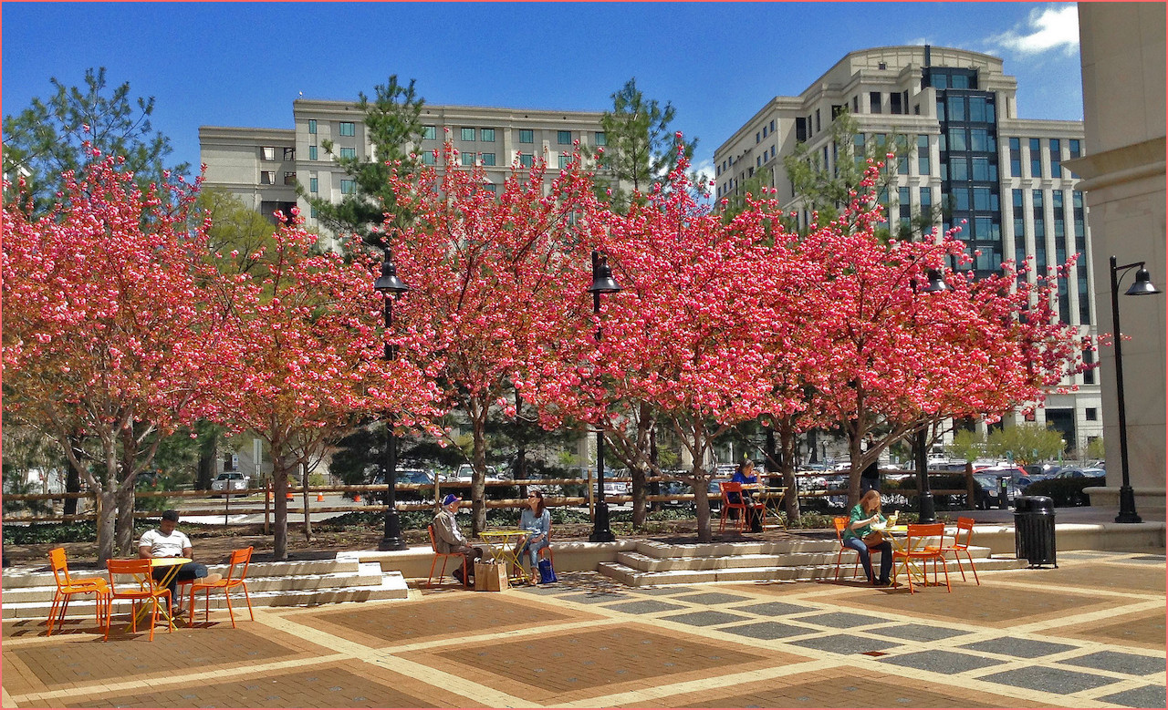 Lunch Time -- Courthouse Plaza Arlington (VA) Spring 2015 | © Ron Cogswell/Flickr