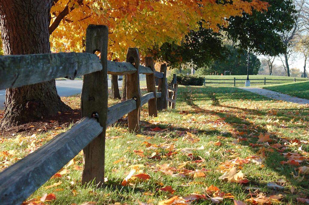 CountyFarmPark/Fence along Platt, Ann Arbor | © danbruell/Flickr