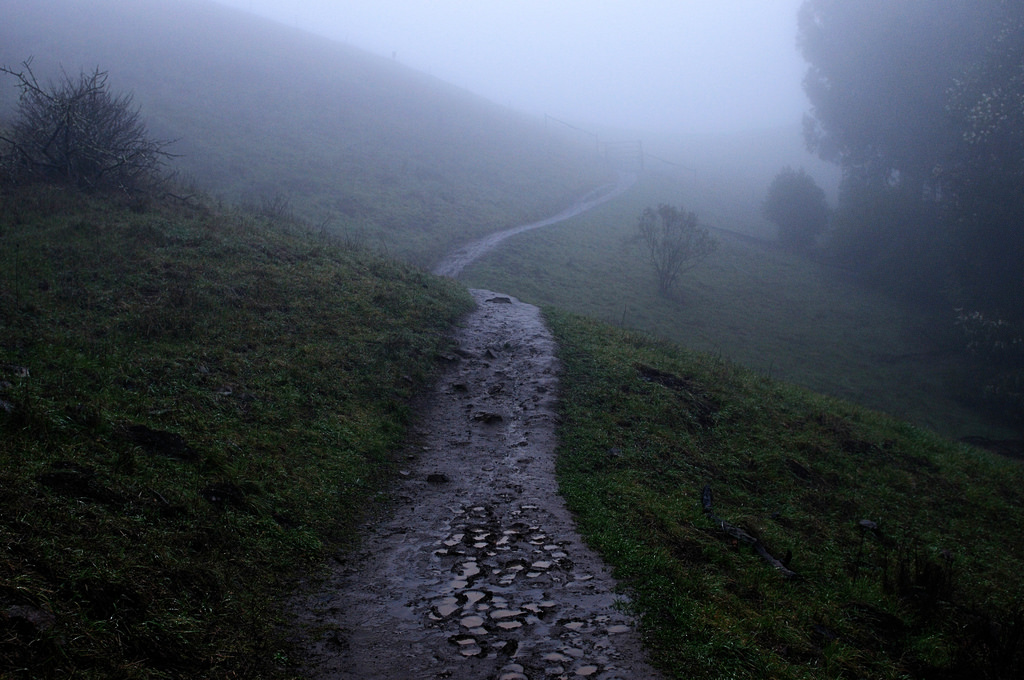 Sibley trail in the rain © Hitchster/Flickr