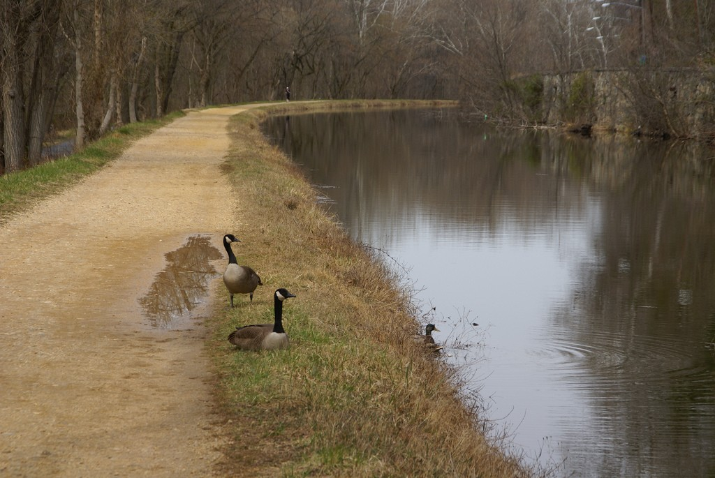 Towpath | © David Baron/Flickr