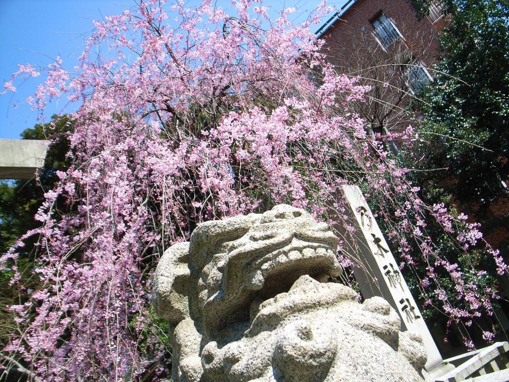 Springtime at Nogi Shrine in Roppongi | © tata_aka_T/Flickr